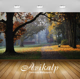 Avikalp Exclusive Awi6395 Sun Light In The Autumn Garden Nature Full HD Wallpapers for Living room,