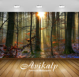 Avikalp Exclusive Awi6441 Sunlit Snowy Forest Nature Full HD Wallpapers for Living room, Hall, Kids