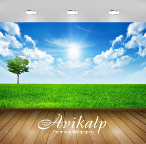 Avikalp Exclusive Awi6443 Sunny Blue Sky Nature Full HD Wallpapers for Living room, Hall, Kids Room,