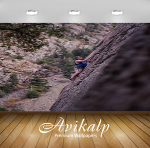 Avikalp Exclusive Premium climbing HD Wallpapers for Living room, Hall, Kids Room, Kitchen, TV Backg