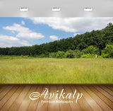 Avikalp Exclusive Awi6552 The Edge Of The Forest Nature Full HD Wallpapers for Living room, Hall, Ki