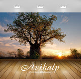 Avikalp Exclusive Awi6592 Tree At Sunrise Nature Full HD Wallpapers for Living room, Hall, Kids Room