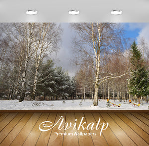 Avikalp Exclusive Awi6717 Winter On The Playground Nature Full HD Wallpapers for Living room, Hall,