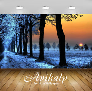 Avikalp Exclusive Awi6722 Winter Sunset Nature Full HD Wallpapers for Living room, Hall, Kids Room,