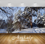 Avikalp Exclusive Awi6724 Winter Trees Nature Full HD Wallpapers for Living room, Hall, Kids Room, K