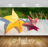 Avikalp Exclusive Awi6739 Yellow And Red Leaves On A Bench Nature Full HD Wallpapers for Living room