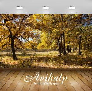 Avikalp Exclusive Awi6740 Yellow Autumn Forest Nature Full HD Wallpapers for Living room, Hall, Kids
