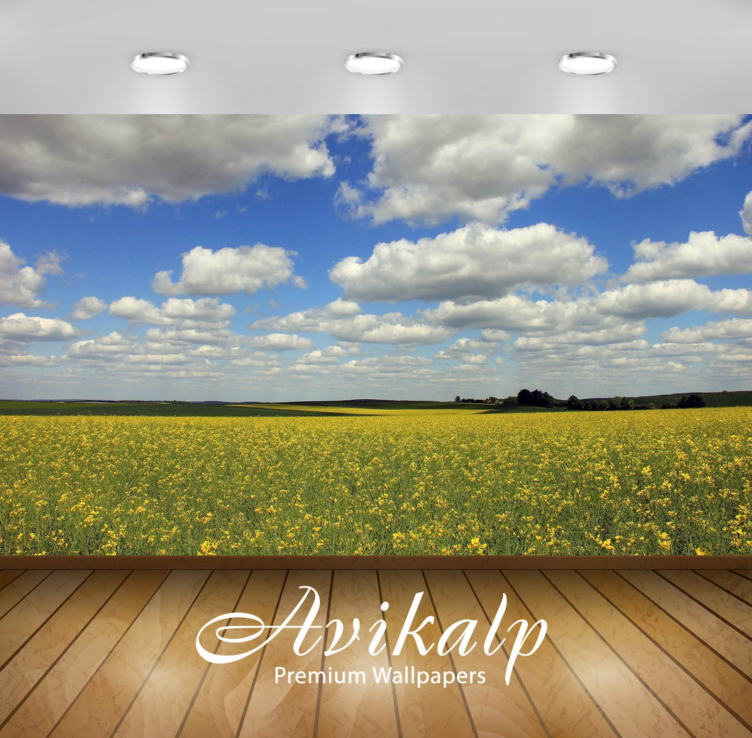 Avikalp Exclusive Awi6744 Yellow Flowers On The Field Under The Fluffy Clouds Nature Full HD Wallpap