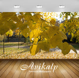 Avikalp Exclusive Awi6753 Yellow Linden Leaves Nature Full HD Wallpapers for Living room, Hall, Kids