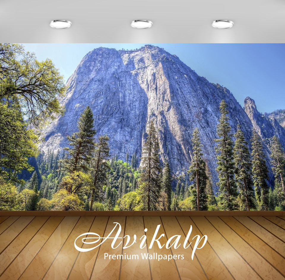 Avikalp Exclusive Awi6765 Yosemite National Park Nature Full HD Wallpapers for Living room, Hall, Ki