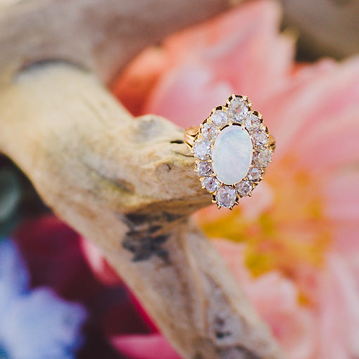 Bold Victorian Era Opal Cocktail Ring | Photo by Evangeline Lane