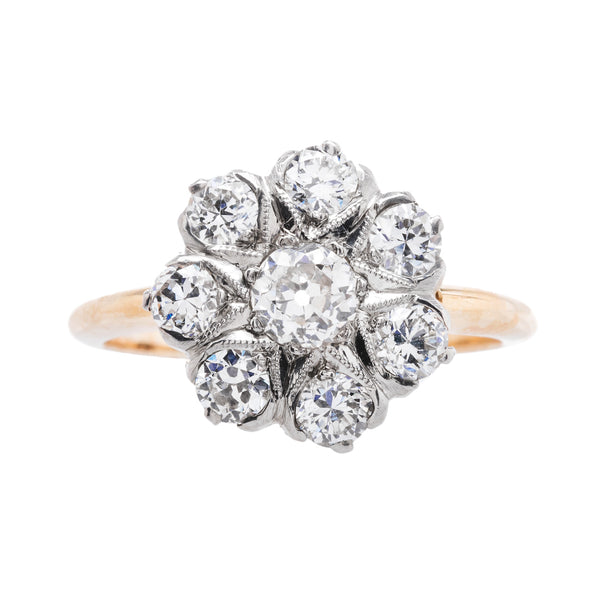 Sparkling Early Edwardian Cluster Ring | Willowcrest from Trumpet & Horn
