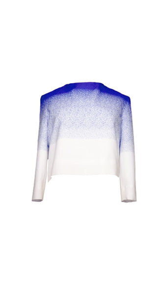 Blue and white fade Print Silk Top by Chanho Jang | Nineteenth Amendment