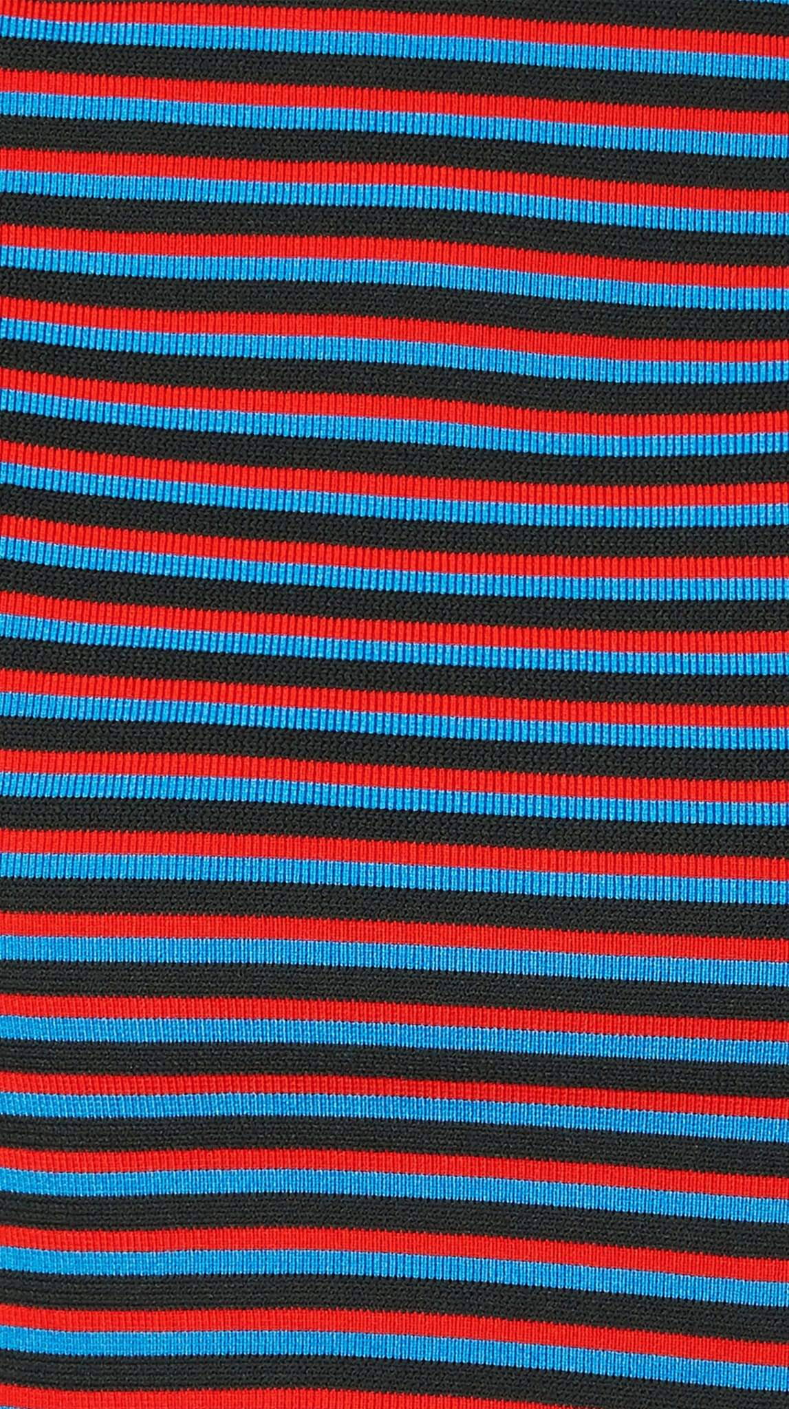 Red, Blue and Black Striped Stretch Crop Top Turtle Neck by Meghan Hughes | Nineteenth Amendment