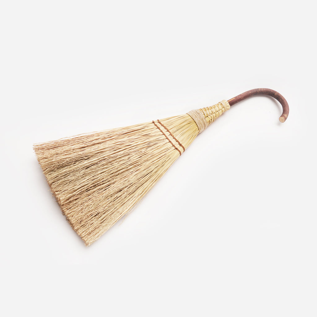 Will-o-wisp broom in natural