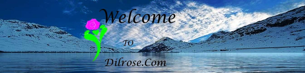 Welcome to Dilrose.Com