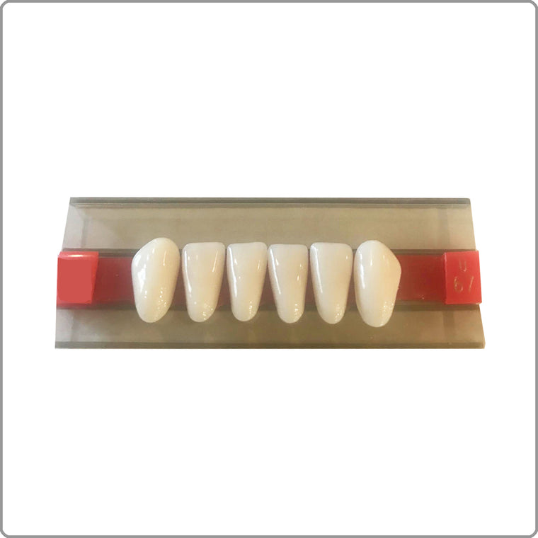 Lower Replacement Teeth