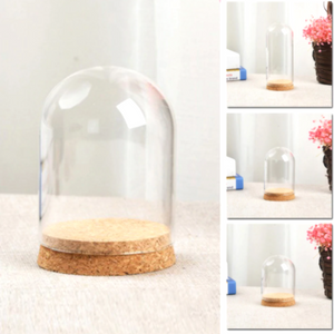 DIY Glass Dome Cover with wood base Display