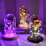 Galaxy Enchanted Rose LED Glass Display (8 Designs)