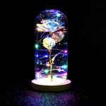 Galaxy Enchanted Rose LED Glass Display