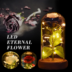 Black, White or Red Enchanted Rose LED Glass Display