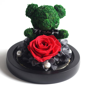 Immortal Preserved Rose Teddy Bear Glass LED Display (4 Colors)