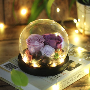Immortal Enchanted Rose Glass Bubble Dome (5 Designs)