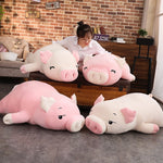 Sleepy Piggy Pig Pillow Plush 3D Stuffed Animal (4 Styles 4 Sizes)