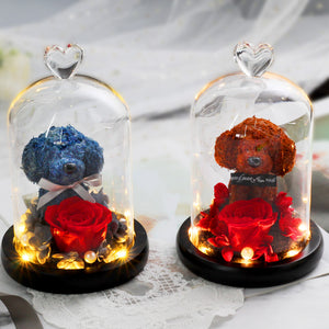 Immortal Preserved Rose Puppy Dog Glass LED Display (4 Colors)