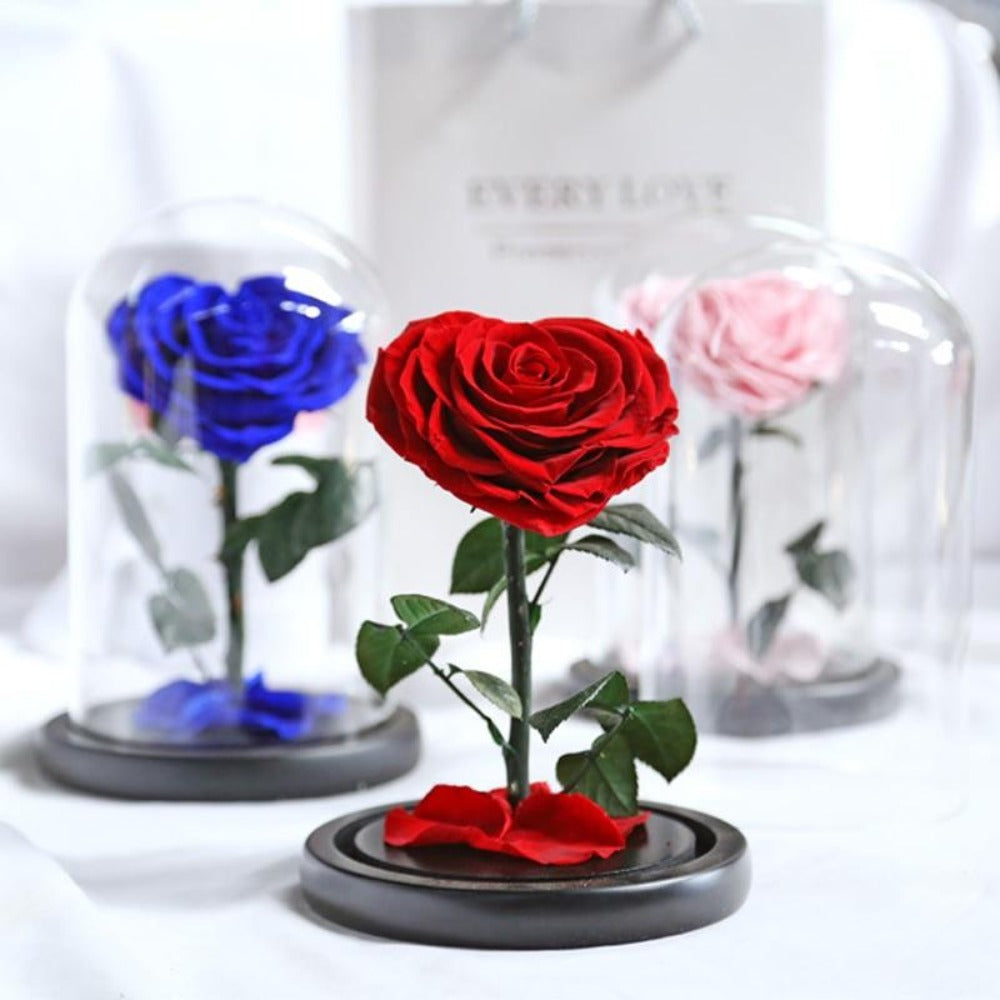 Heart Shaped Immortal Enchanted Preserved Rose Glass Display (3 Colors)