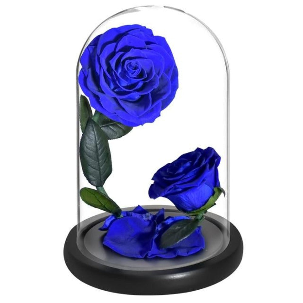 Double Head Immortal Enchanted Preserved Rose Glass Display (5 Colors)