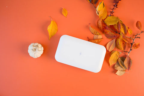 PhoneSoap by a pumpkin and leaves