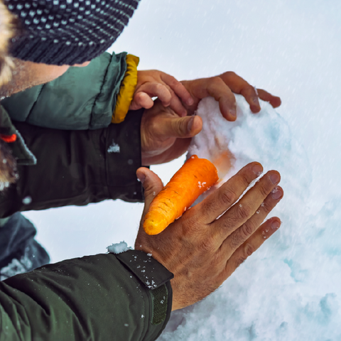 two hands building a snowman and putting in the carrot nose