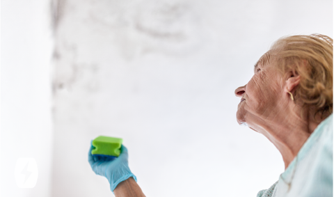 A woman holds a sponge preparing to scrub a wall