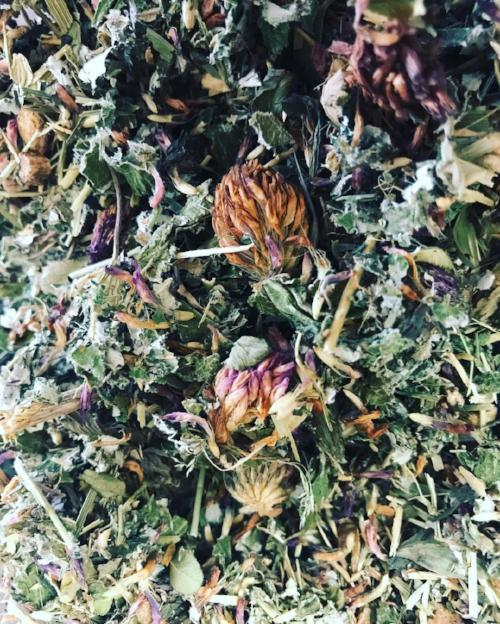 Womb Bliss Herbal Tea Blend (Preorder)