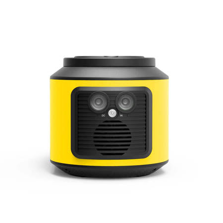 RS420 Portable Generator