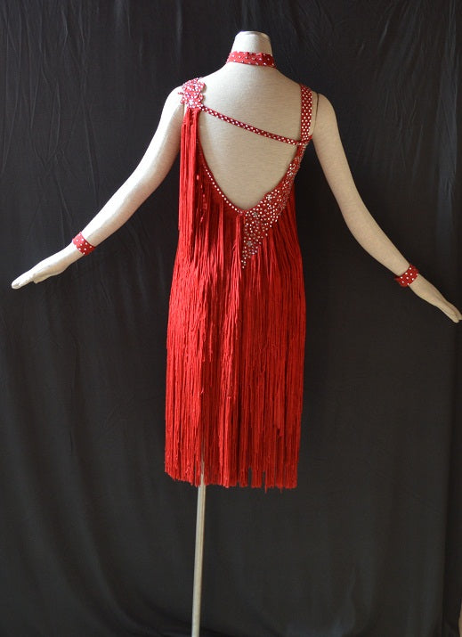 Flawless Fringe & Rhinestones Rhythm or Latin Ballroom Dance Dress