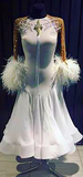 Fabulous Feathers! Ballroom Dance Dress