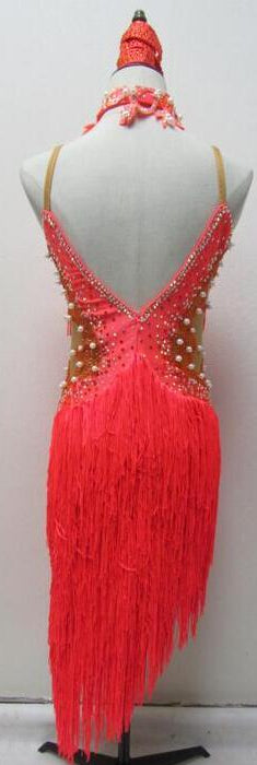 Mesh Side Flirty Fringe Rhythm & Latin Ballroom Dance Dress