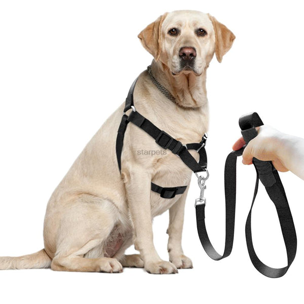 No-Pull Nylon Dog Harness With Leash Training  Front-Attachment Harness Stop Pulling On Lead Small Medium Large