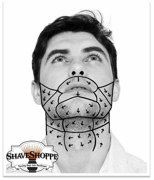 Face Mapping Hair Growth Patterns The Shave Shoppe Enchanting Hair Growth Patterns