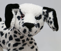 Spotty Dog is a friendly, spotty, very well behaved, artist teddy dog made in spotty faux fur and black vintage mohair by Barbara Ann Bears, she stands 9 inches( 23 cm) tall, she is 12 inches (31 cm) from nose to the base of her tail and she is 11 inches (28 cm) across the ears.