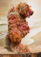 Winnie McInnery, a wild, quite large and characterful, one of a kind artist bear by Barbara-Ann Bears in gorgeous scraggly hand dyed mohair, she stands 19 inches (48 cm) tall and is 13.5 inches (34 cm) sitting. She is made from a gorgeous, long, straggly mohair that Barbara has dyed in a multitude of natural colours