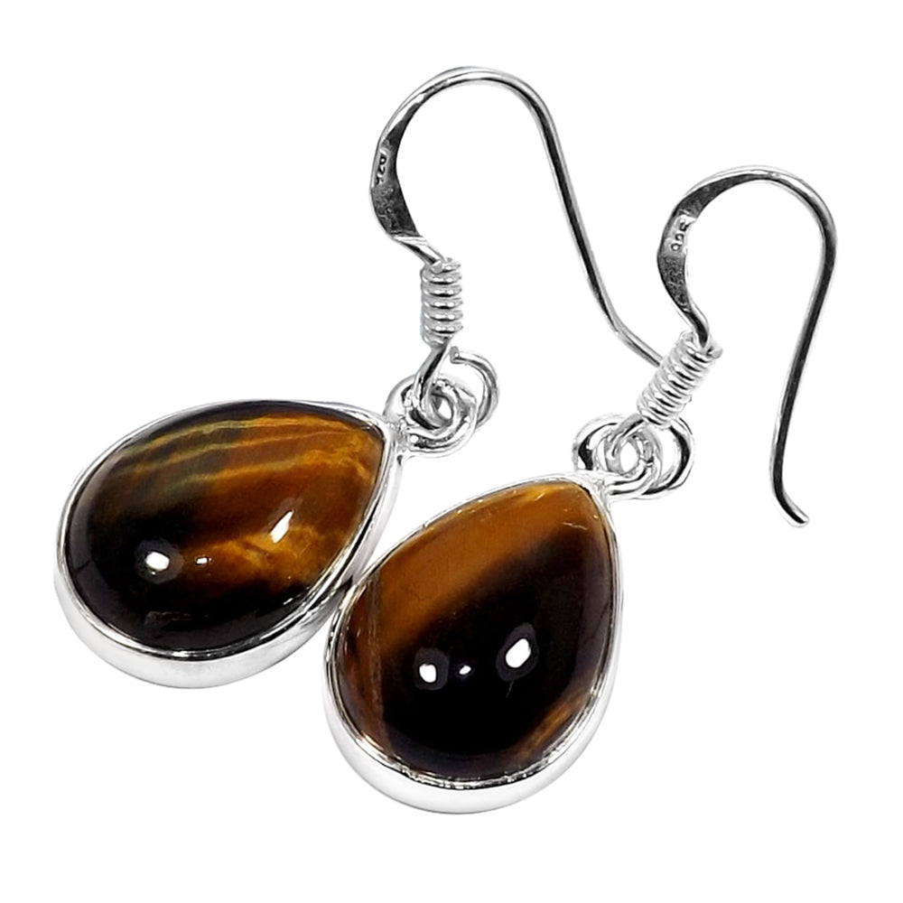 Anaisha Tiger Eye Earrings