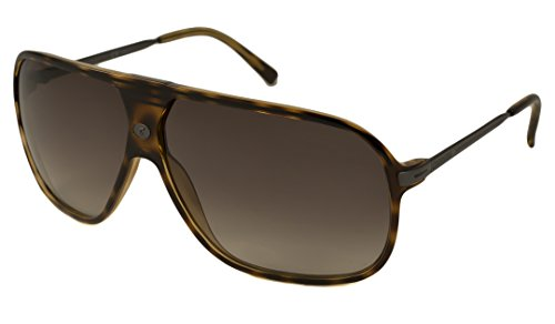 Carrera 54/S Sunglasses Havana / Brown Gradient