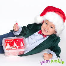 Mini Candy Canes - Red and White: 100-Piece Tub