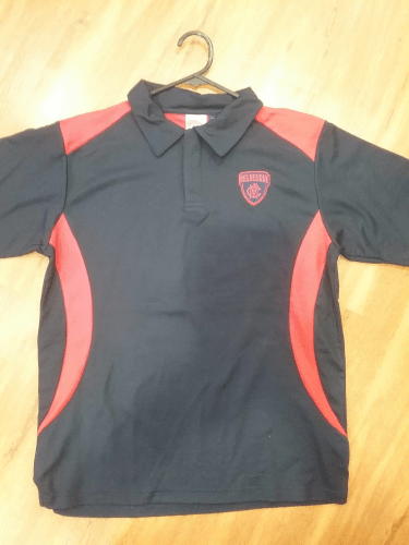 Footy Plus More Clothing Melbourne Demons Mens Core Logo Polo Top