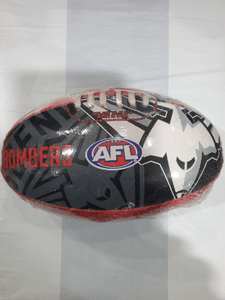 Footy Plus More Football Essendon Bombers Size 2 Football
