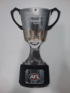 Footy Plus More Party Premiership Cup Small 32cm