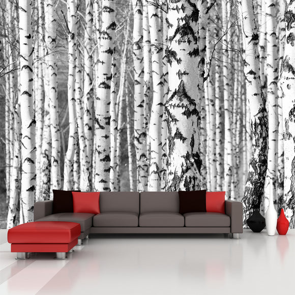 Wall decals wall stickers and murals wallderful for Birch trees wallpaper mural